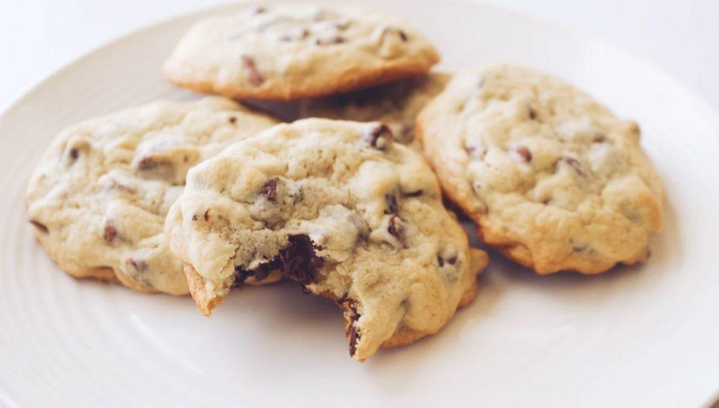 Biscuit protéiné